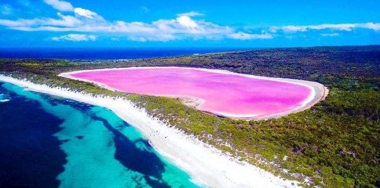 호염성 생물이 만들어낸 신비한 핑크색 호수
