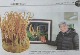 노과학자의 마음을 설레게 하는 강원일보 2월 21일 자 29면