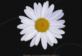 LU42 꽃 MBTI 심리테스트 [프리미엄 셀렉트샵]