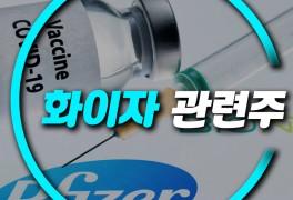 화이자 관련주 신풍제약 KPX생명과학 제일약품 우리바이오...