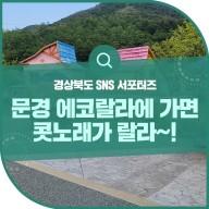 """경북 아이와 가볼만한곳 """"문경 에코랄라 자이언트 포레스트"""""""