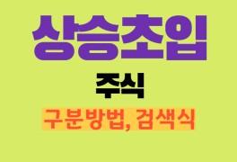 검색식 만들어보기 (인터파크, 다믈멀티미디어, 한국비엔씨 주가)