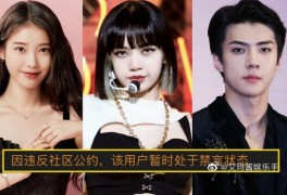 아이유·블랙핑크·엑소 등 중국 팬클럽 21개 '폐쇄' 방탄소년단...