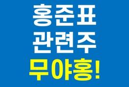 홍준표 관련주 - 국내주식 대선주 정치테마주 (한국선재...