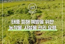 【제14호 태풍 '찬투' 북상】 태풍 피해 없도록 사전...