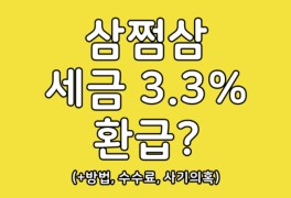 삼쩜삼 세금 3.3% 환급 방법 수수료 최대 16만원