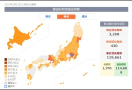일본 생활) 코로나 이후, 벚꽃 만 개.. 지역사회 확진자 만개?!