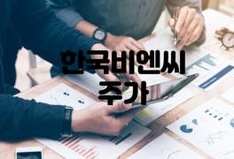 한국비엔씨 주가 하락 이유 투자경고 전망 (현재가)