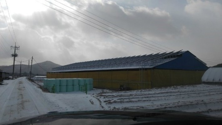 버섯재배사태양광발전소