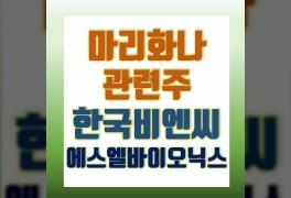 한국비엔씨 주가 에스엘바이오닉스 마리화나 관련주 분석