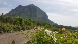 풍경이 아름다운제주도-산방산 올레길