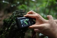 하이엔드 카메라 접사기능이 대단하다 올림푸스 TG-5 제주야생탐험