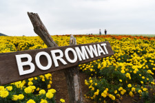 제주도 10월 가볼만한 곳- 어서와~ 보롬왓은 처음이지?