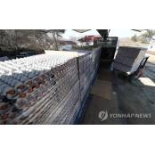 가격 뛰어도 먹는 알부민가격 계란…한국인에는 추억과 보양의 알부민가격 음식
