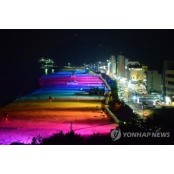 삼척해변은 여름밤도 뜨겁다…파티·공연 조개파티 등 풍성