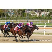 horse-racing system-exports