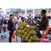 말레이시아 두리안 가격 50% 하락…신종코로나로 두리안 중국 소비 줄어