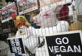 """""""완전한 채식을 촉구한"""