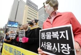 '동물복지 펼치는 서울