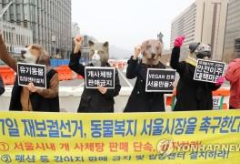 '동물복지 서울시장 촉