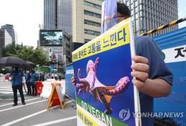1인 시위하는 한국채식