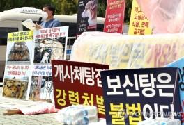 한국동물보호연합, 개