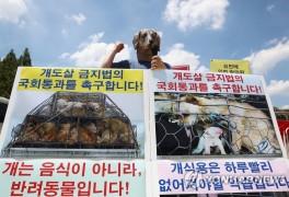 '개도살 금지법 국회