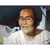 """네 할머니의 증언 """"일본놈들, 병든 여성 자궁을 일본남자팬티 총으로 팍 쐈어"""""""