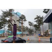 강원랜드 카지노 추가 휴장 고민?…1~2주일 정선카지노호텔