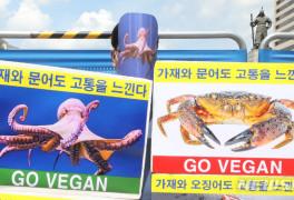 '채식으로 바다동물 살