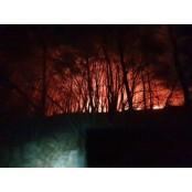 신불산 화재 5시간 30분 만에 진화…산림 1.25h 신불산 피해