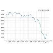 해성산업 주식회사 스포츠토토코리아와 토토일보 33억원 계약체결