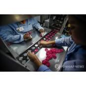말레이시아 이동제한 명령에 세계 최대 콘돔업체 공장 콘돔주문 셧다운