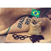 #9. 세계 최대의 커피 생산지는?