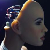 [그래픽텔링] 섹스로봇, 전투로봇...인간 대 로봇의 경쟁이 시작됐다 첫섹스