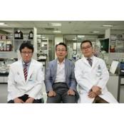 인하대, 새로운 발기부전 당뇨성발기부전 치료법 개발
