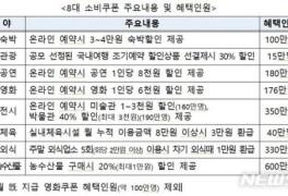 코로나 거리두기 2단계 격상 시 정부 8대 소비쿠폰 '중단?'