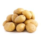 포카칩에도 제철이? 6월에 감자칩이 더 맛있는 이유 포카칩