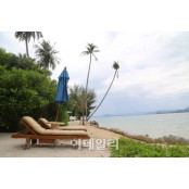 추위피해 따뜻한 곳으로...동남아 자유여행 구매객 급증