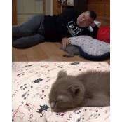 '마리와 나' 강호동, 아기 고양이 마리와나 고양이 재우기 도전…실패 이유는?