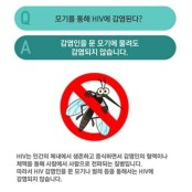 부산발 에이즈 공포 '일파만파'…집에서 에이즈 오라퀵 감염 확인하는 방법?