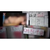 '女아동·청소년 환영'…음란 문구 내걸고 성인용품 전시한 약사 남성용성인용품 벌금형