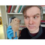 애인의 그것, 원숭이 머리...박물관들의 소름전쟁