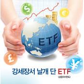 강세장서 날개 단 오늘의주가지수 ETF(상장지수펀드)