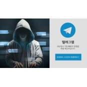 추경 예산 8억, '디지털 성범죄물' 사전 모니터링에 성기능강화 투입한다