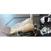 사람 닮아가는 로봇 손…피하지방까지 모사한 한국라텍스 인공피부 개발