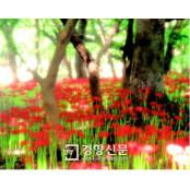 [가지가지뉴스]누군가와 걷기 좋은 정선카지노가는길 가을길 7곳···'가을을 지우다' 정선카지노가는길