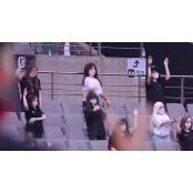 """FC서울 성인용 인형, 서울성인용품점 연맹이 소개""..."