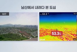 [날씨] '대서' 펄펄 끓는 도심...열화상 카메라로 보니