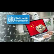 [사실은] 중국인 의료비